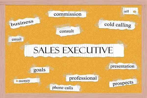 Sale Executive là gì?