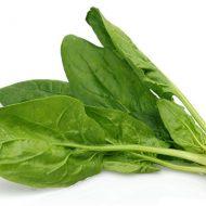 Rau spinach là rau gì? Những lợi ích bất ngờ của rau spinach