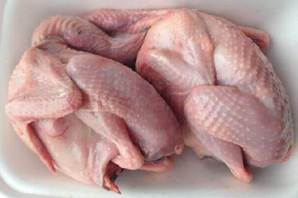 Thịt bồ câu