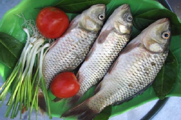 Món ăn từ cá chép