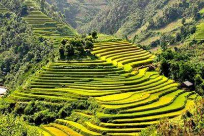 Tìm hiểu đặc trưng lễ hội và văn hóa ẩm thực của Lào Cai