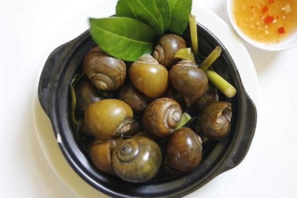 lẩu ốc luộc nước dừa