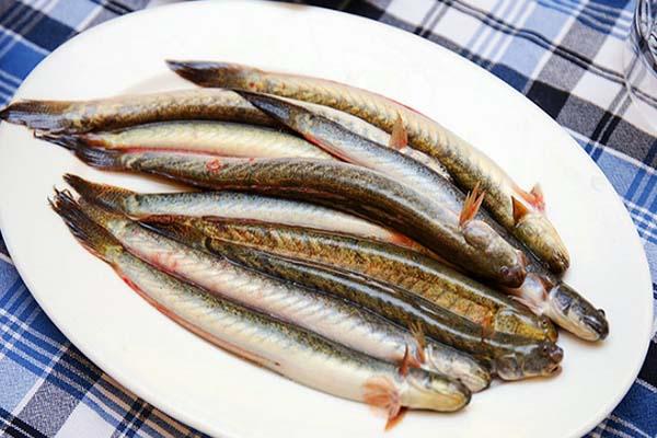 cách làm sạch nhớt cá kèo