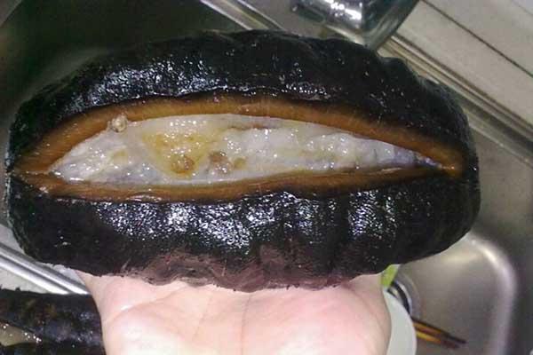 thịt hải sâm