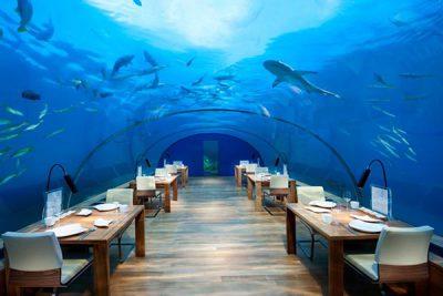 Vòng quanh khắp thế giới khám phá những nhà hàng khách sạn dưới biển